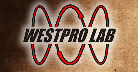 "Western Professional, Inc., or ""Westpro"", is an independent non-destructive testing lab servicing aerospace suppliers and prime contractors and other strategic industries"